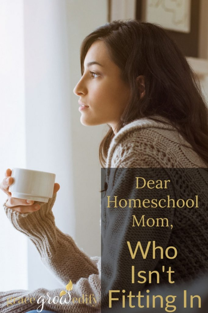 To All of the Homeschool Moms Who are Not Fitting In