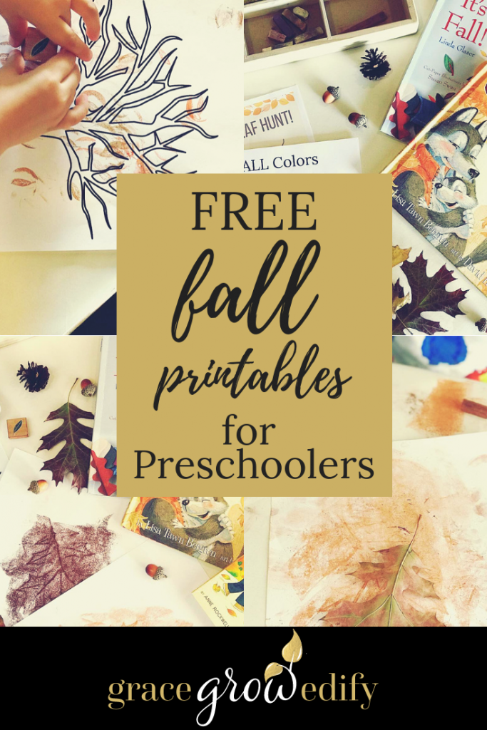 Homeschool FALL Fun for Littles with Books & Preschool Unit Study