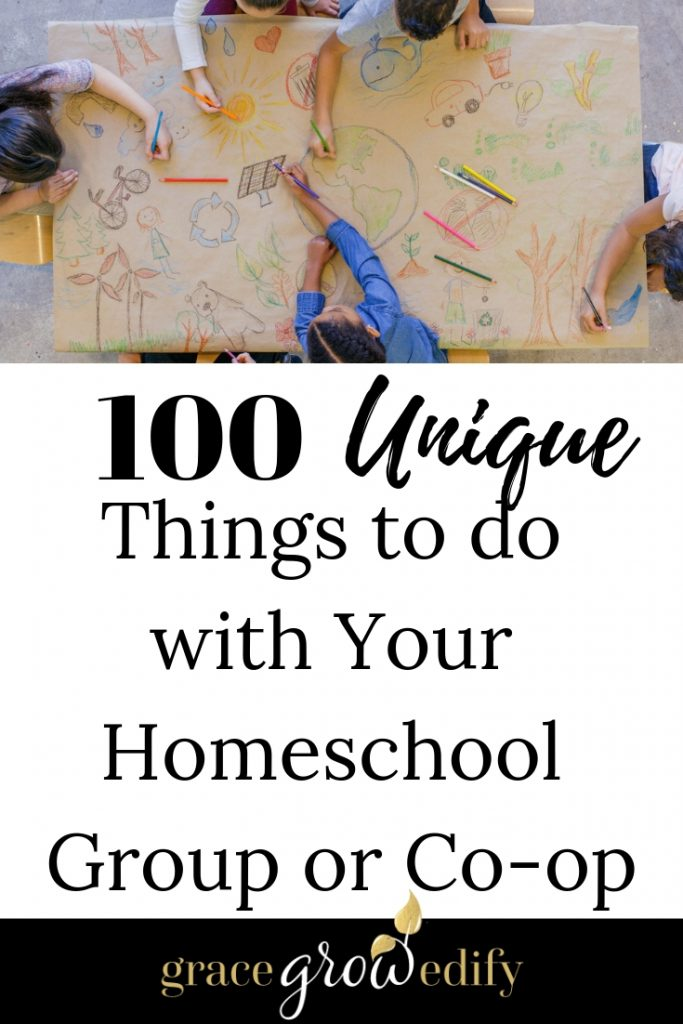 100 Unique Things to do with your homeschool group