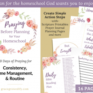 Praying Before Planning for Your Homeschool
