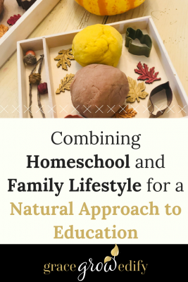 Combining Homeschool and Family Lifestyle for a Natural Approach to Education