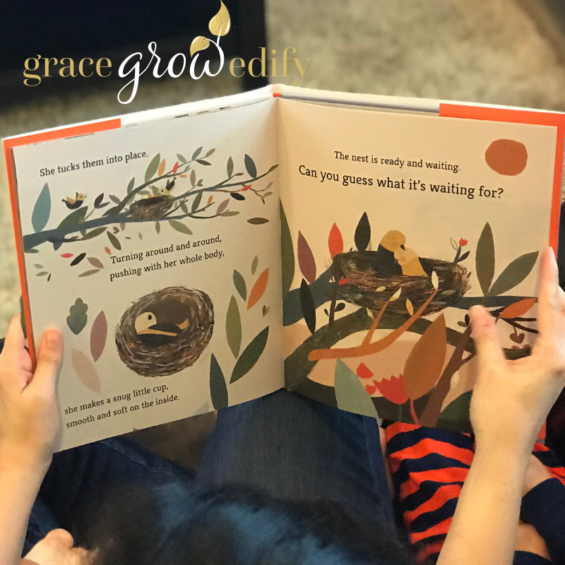 Quality Books about Nature that will Captivate your Preschooler
