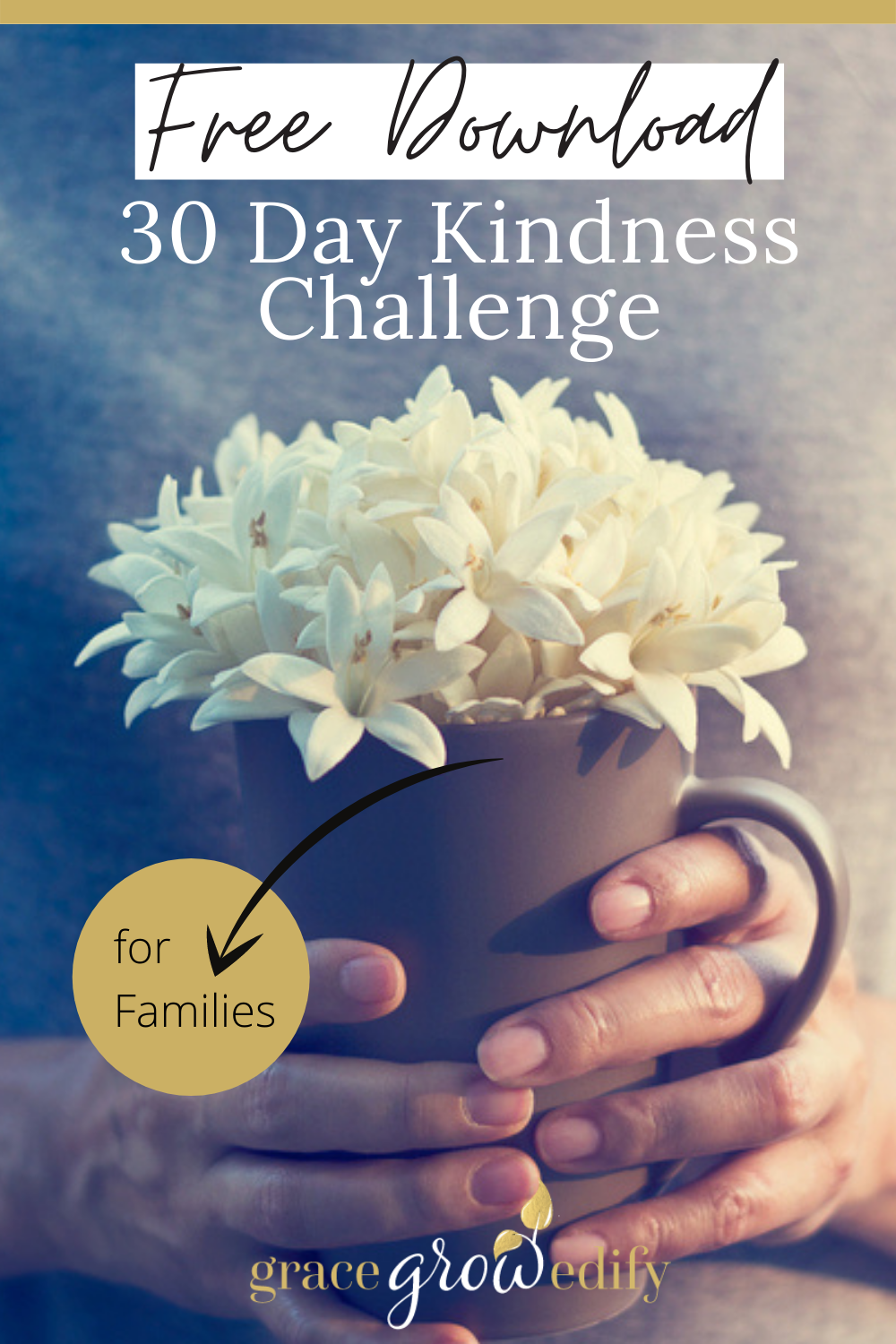 30 Day Kindness Challenge for Families