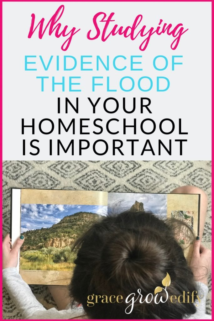Why Studying Evidence of the Flood in Your Homeschool is Important